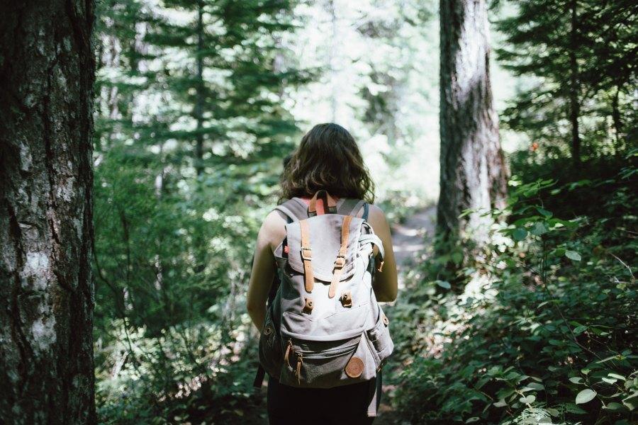 tutkimukset luonto, tutkimus luonnon hyvinvointivaikutukset, luonnon psykologiset vaikutukset, luonto itsesaately, luonto tunteidensaately, luonto ja mielenterveys, mielipaikka, luonto mielipaikka